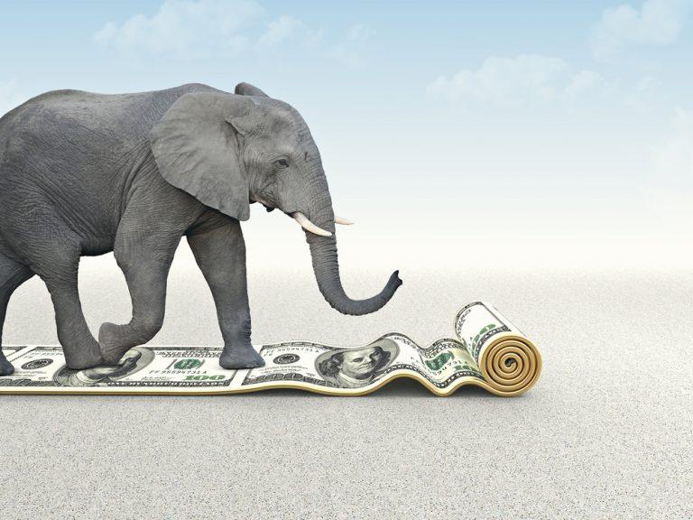 Controller & Remote CFO Services [Image: Elephant walking on dollars]]
